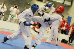 12-taekwondo
