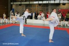 6-taekwondo