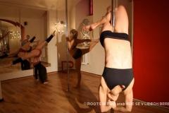 ve filmu je vidět spousta krásných tělíček profesionálních poledance sportovkyň