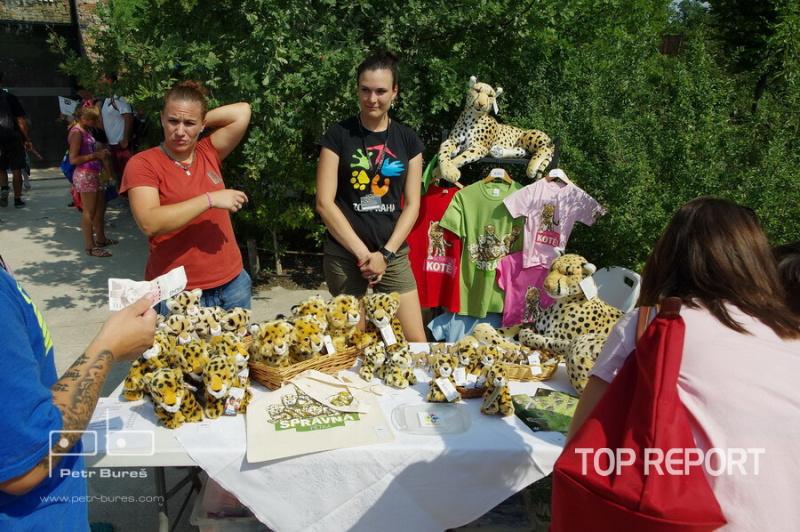 Křest gepardích paterčat