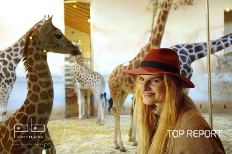 Iva Pazderková a mládě žirafy severní núbijské Nela