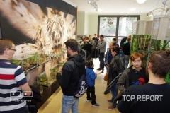 Výstava Sklípkani